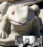 kissfrog