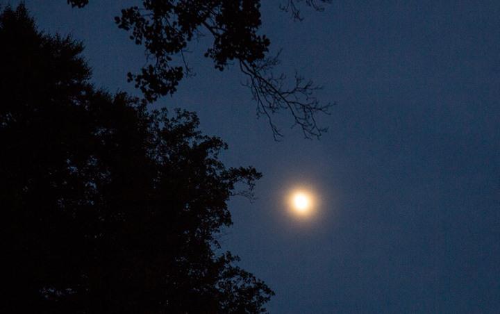 ghost-moon