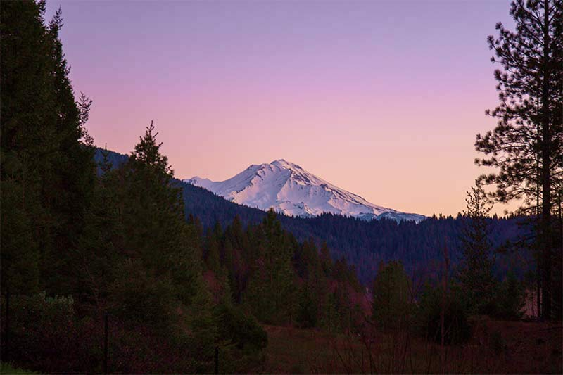 Mt. Shasta in the morning