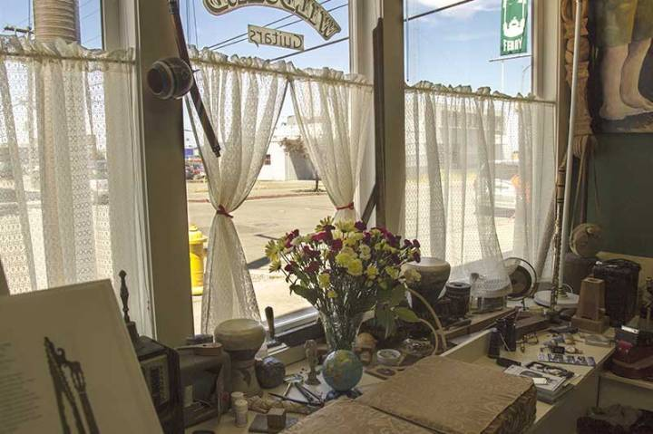 Wildcard Guitars flowers in the display window.