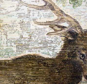 Durer's Deer, Renée Bott