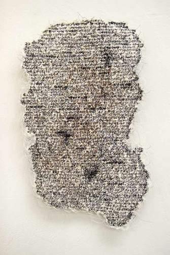 Fragment, Lisa Kokin